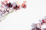 名古屋のミラドライおすすめクリニック10選! 手術なしのワキ汗・におい治療