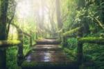 都立霊園、民営霊園に満足している理由
