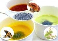 カエルの卵にそっくりなバジルの種を使ったスープ