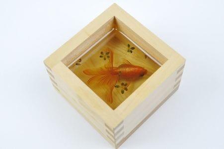 サンシャイン金魚展