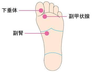 足ツボ頭痛対策