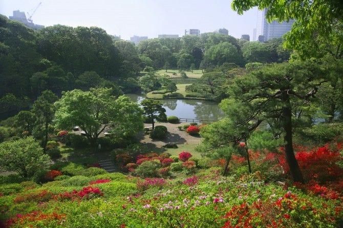 国の特別名勝にも選ばれた、歴史ある庭園「六義園」
