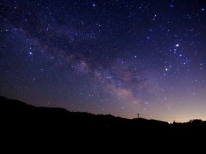 天体観測VSナイトクルージング! 女子が今年の夏に好きな人と体験してみたいのは