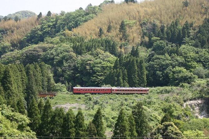西畑駅付近の雄大な緑の谷間をぬけて走る「いすみ鉄道」(千葉県)。2両編成のうちの1両がレストラン。車窓からは港町や田園風景が見られるほか、秋は沿線に揺れるコスモスも見どころのひとつ