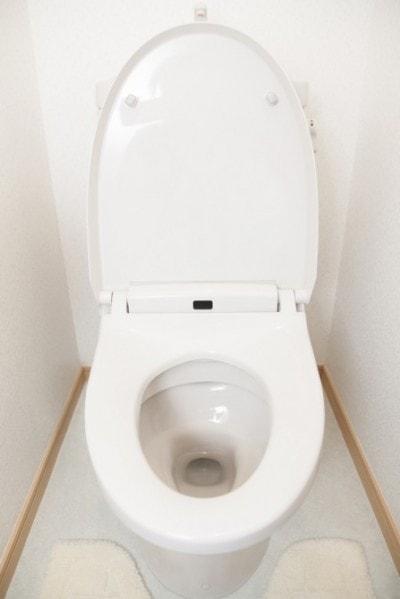 日本のトイレ最高! と実感した瞬間