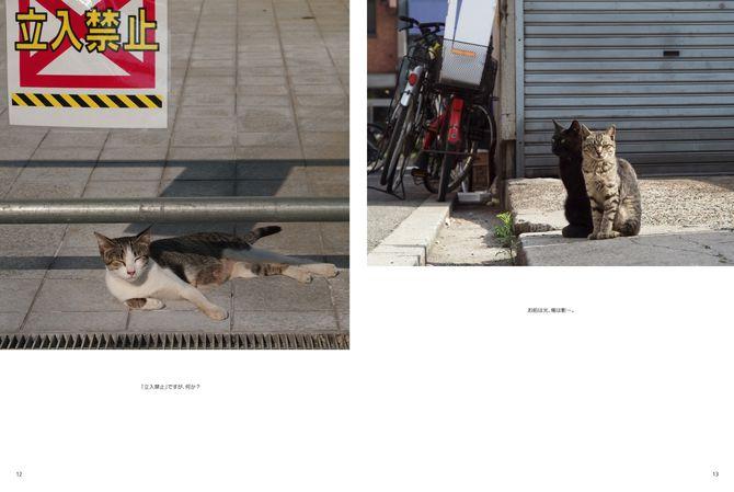 のびのび暮らす地域猫 http://www.photoback.jp/Stage/Photoback/PBER-2511281412200244160 ※12~13ページ目(「立入禁止」札のある写真)