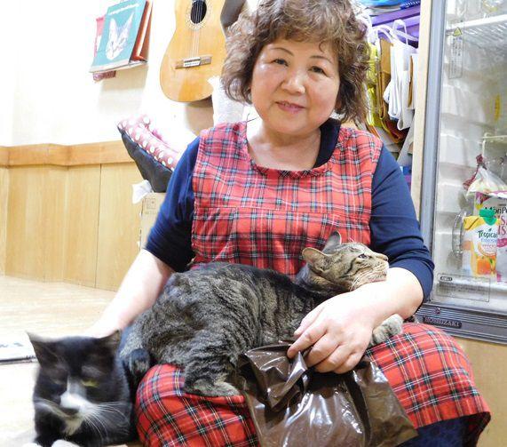 女将さんにゴロゴロ甘える猫たち