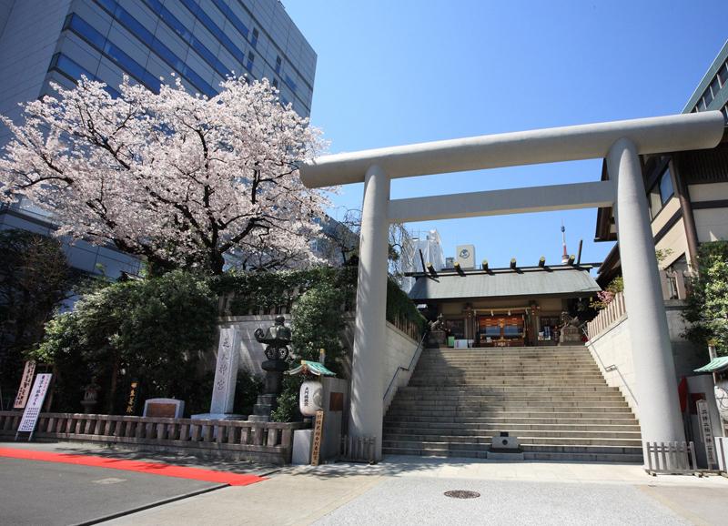 芝大神宮の芝大桜