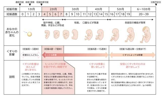 妊娠の時期とくすりの影響(出典:妊娠・授乳とくすり)