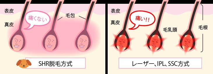 full-length_compare