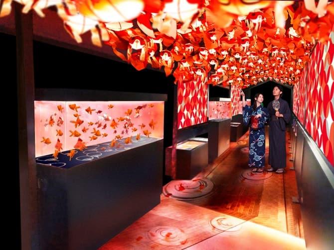 金魚づくしの夏限定イベント「東京金魚ワンダーランド」※イメージ