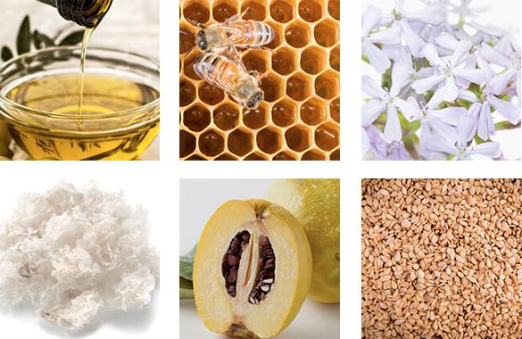 泡立ちなどの使い心地や、もっちり肌へ導く6種類の天然由来成分も配合