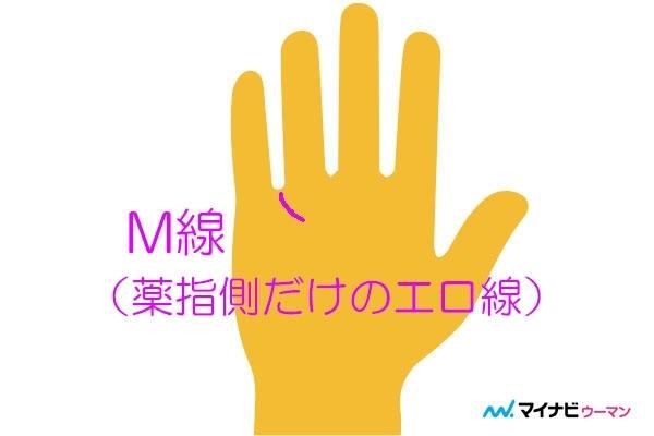 エロ線が薬指側だけにある(M線)