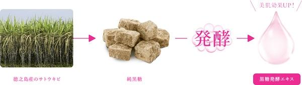 黒糖精 プレミアム パーフェクトエッセンス