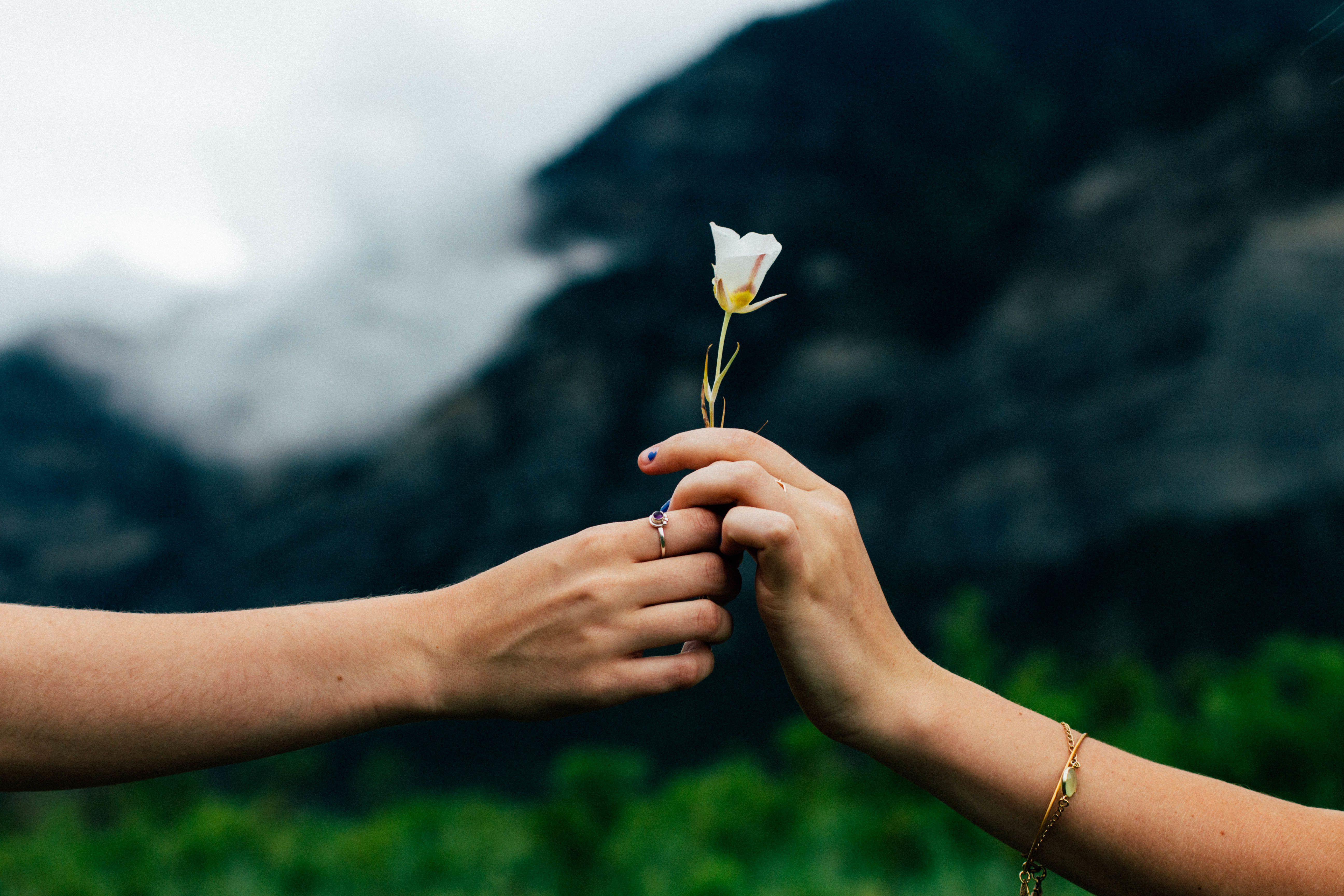 男性が「結婚相手にいま一番求めるもの」