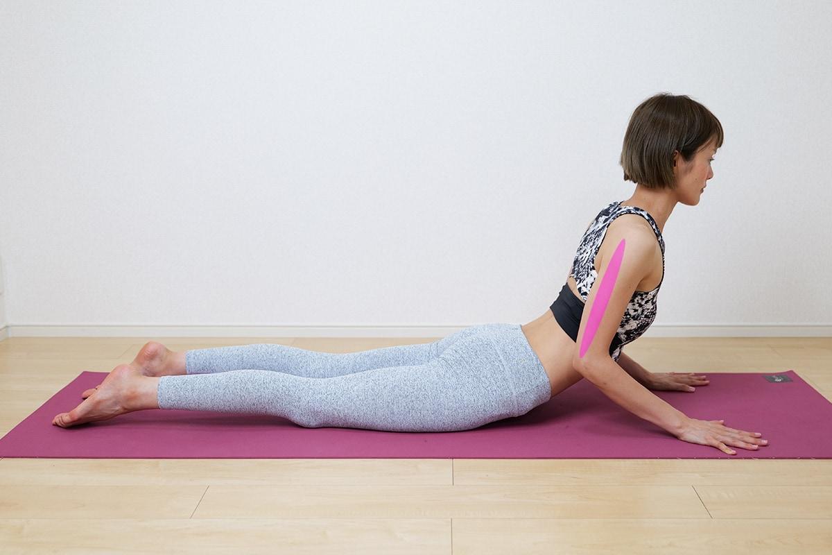 腕に効く自重トレーニングのやり方