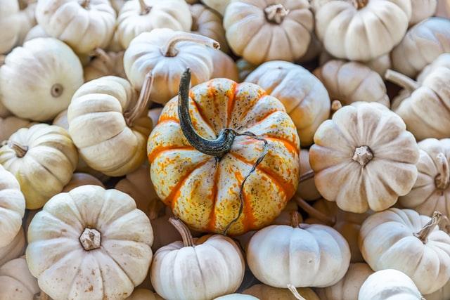 かぼちゃの「栄養を逃さない食べ方」