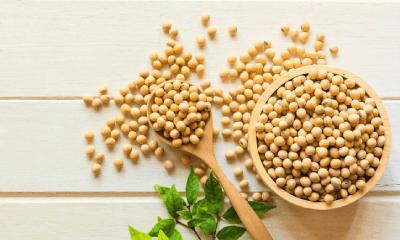 ひと言では伝えきれない! 大豆の栄養パワー