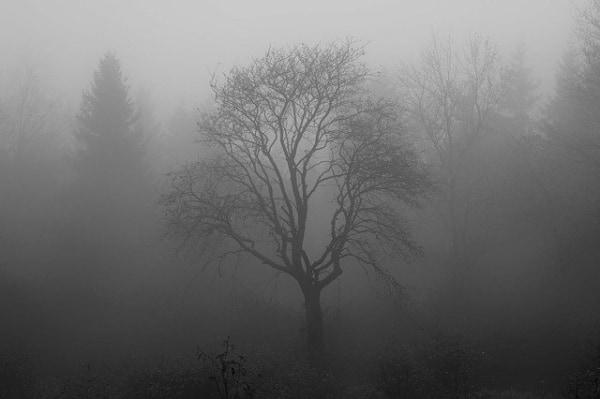 追いかけ 夢 られる に 幽霊 【追いかけられる夢】夢占いの意味や深層心理とは?
